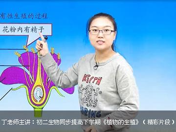 初三生物同步提高下学期课程(五四制鲁科版)